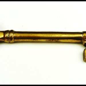 Giant Skeleton Key